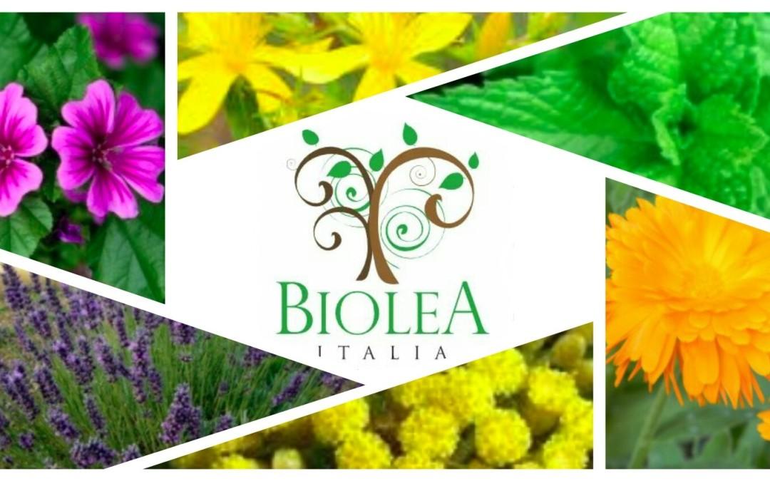 Il mondo della cosmesi naturale ti incuriosisce? Scopri insieme a  Biolea Italia principi terapeutici, benefici e usi popolari delle piante officinali.